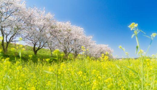 入社、新人歓迎会。春は出会いの季節【大切な人をつくるコツ】