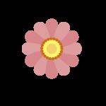 0-22-nature_color_icon